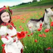 Дети на маковом поле фото