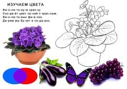 Детские стихи для изучения цветов