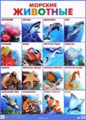 Плакат морские животные